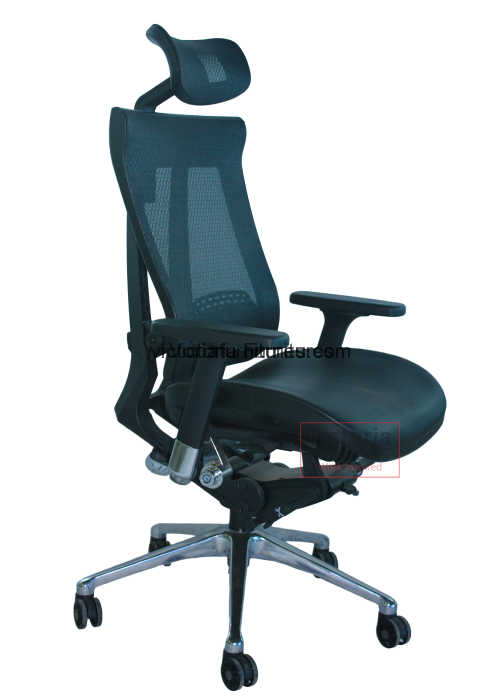 Home Office Chairs Mesh Chairs Orthopaedic Chair IRIS